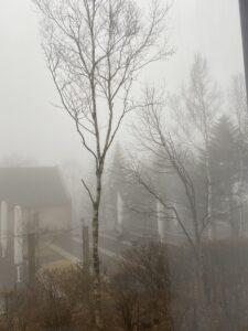 霧 車山高原 スカイパークホテル